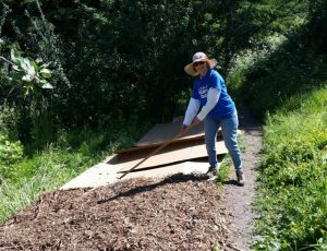 West N.O. side of trail mulched, improving soil and creating better access.