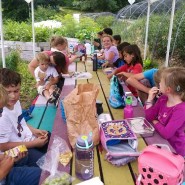Welcome Back Outdoor Summer Camp….