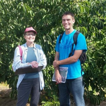 City Fruit measures up Meadowbrook Orchard