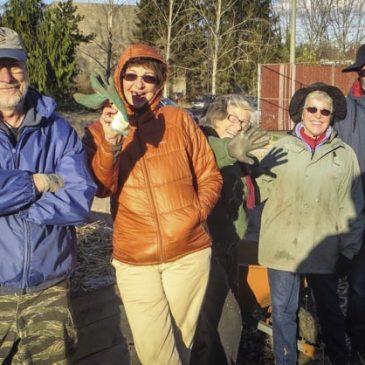 Meadowbrook Annual Garden in December