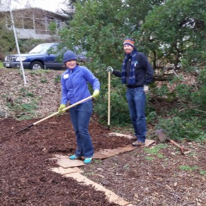 west end Orchard mulch pile gets cleared out