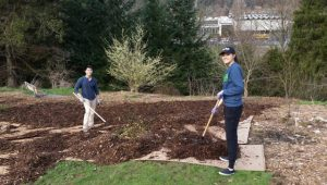 Mulching the very wet area around North Orchard and Trail