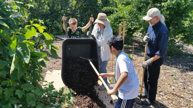Plant for the Planet youth mulch orchard, as Stewards look on