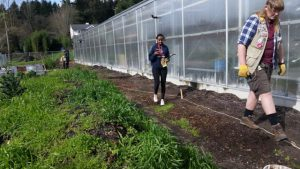 students walk new planting area; south facing!