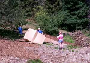 Weeds are tackled with mulch and cardboard