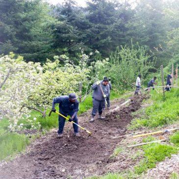 MCGO Trail Improvements Begin…
